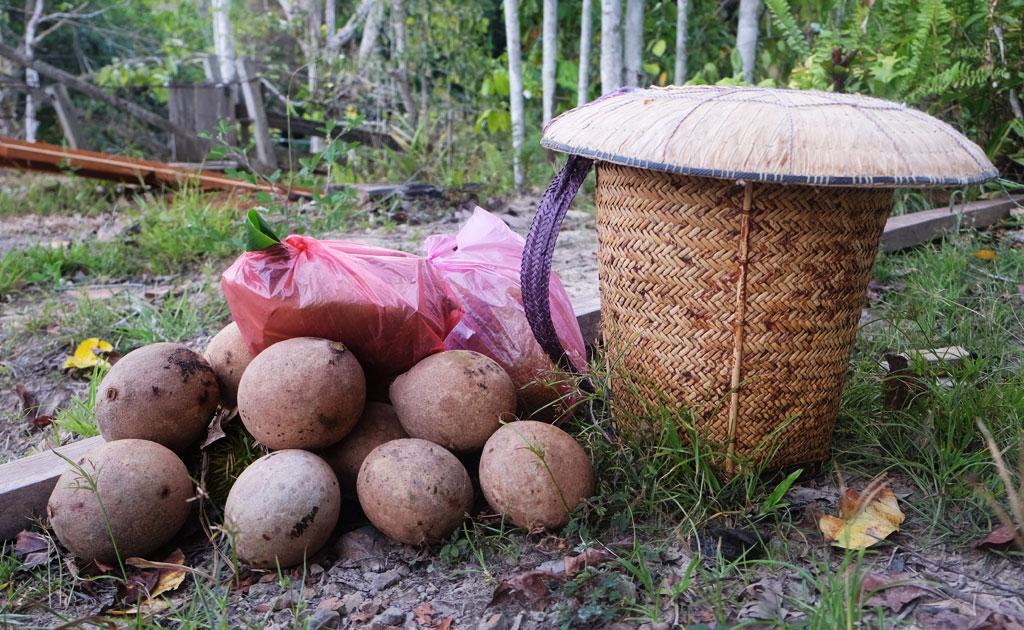 Indigenous Kelabit basket